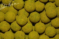LK Baits Boilie Fish Activ 20mm 1kg - World Record Carp Corn
