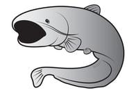 Delphin Nálepka sumec SILVER