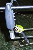 Flajzar Signalizátor záběru s vysílačem FISHTRON Q9-TX - červený