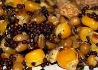 Amino Mix Vařená kukuřice 1kg - s konopím Natur